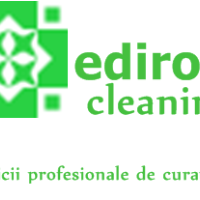 edirom cleaning